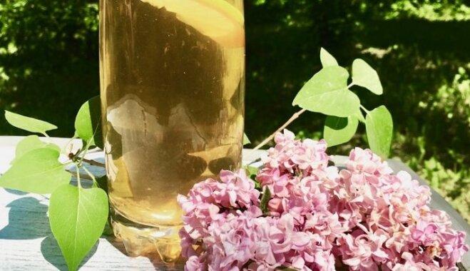 Aromātiskā ceriņziedu ledus tēja