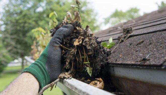 Tīrība uz jumta – kam jāpievērš uzmanība pirms lapkriša