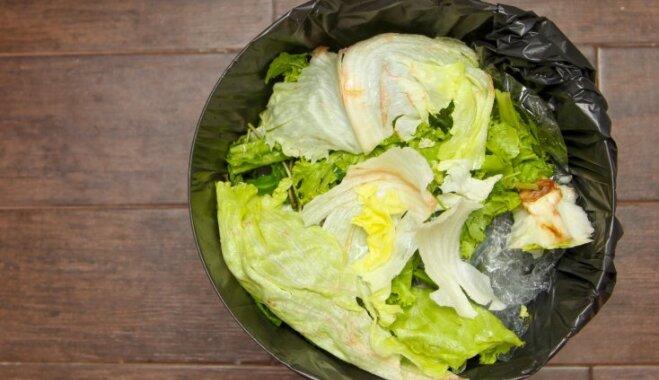 5 причин не держать мусорное ведро на кухне в шкафу