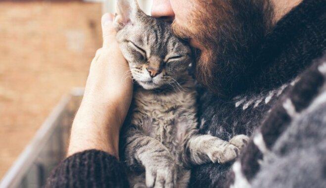 Septiņas profesijas, kas īpaši piemērotas kaķu mīļiem