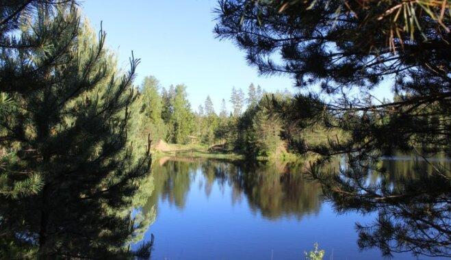 ФОТО. Один день на природе: тропа у карьера Карогу и валун Дзелзамура