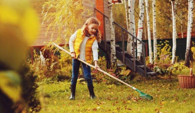 Kas darāms dārzā no 2. līdz 9. oktobrim?