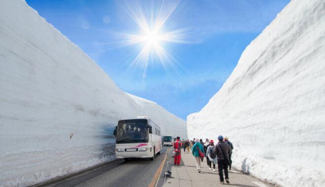 ФОТО. Лучшая достопримечательность весны в Японии – 20-метровая стена из снега