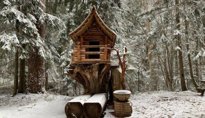 ФОТО. Зимняя сказка на природной тропе Сканякална