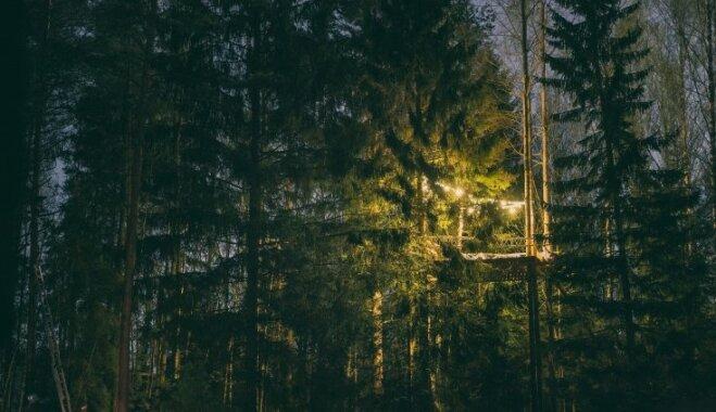 7. jūlijā Ķegumā būs iespējams baudīt vakariņas koku galotnēs