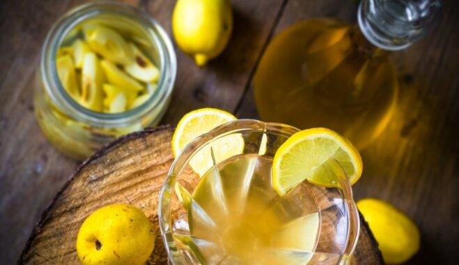 Latvijas citrona - cidonijas labās īpašības un daudzās imūnsistēmas uzlabošanas spējas