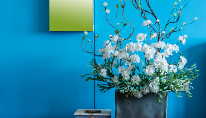 Aktivizē harmoniju mājās: kā izvēlēties krāsas savam mājoklim