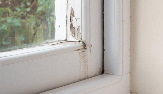 Koka logi un durvis pavasara gaidās – kā apsekot un kopt šos elementus