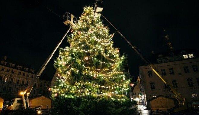 ФОТО. Где красивее - в Риге, Таллине или Вильнюсе? Голосуем за самую красивую елку