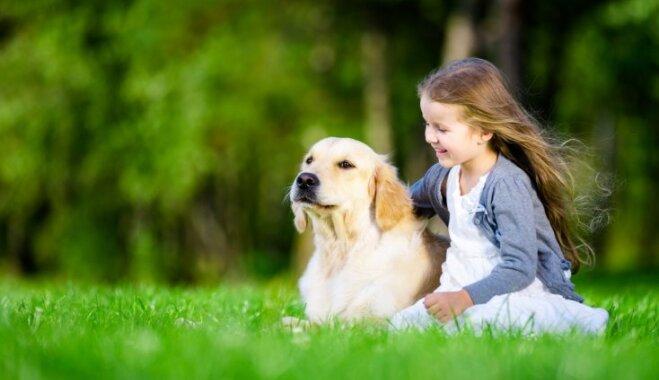 Ieteicamākās suņu un kaķu šķirnes ģimenēm ar bērniem