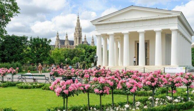 Krāšņais rožu dārzs Vīnē, kurā virmo franču stila vēsmas