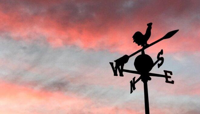 Metāla Gaiļa mēnesī augstu vilni sitīs politika un mīlas mokas