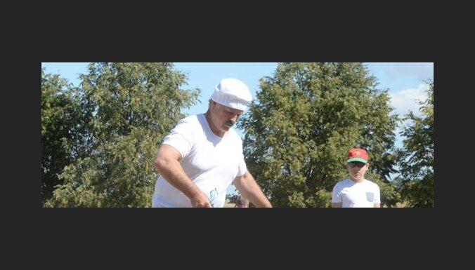 Лукашенко с сыном за полтора часа собрали 70 мешков картошки