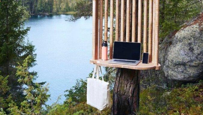 В лес с ноутбуком: В Финляндии появились необычные пункты для удаленной работы