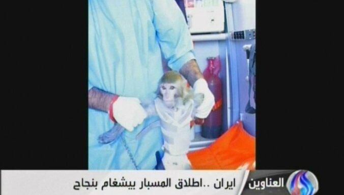 Иран запустил ракету с обезьяной на борту