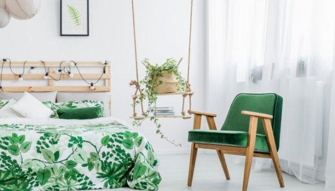 Какие растения нельзя ставить в спальне?