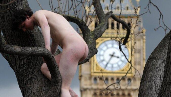 Жизнь в 2010-м глазами фотографов: гелаты, бургеры и стриптиз на дереве
