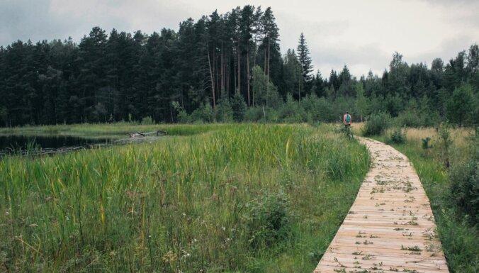 Bilskas ezers, Bilska, Smiltenes novads, pastaigu laipa, dabas taka