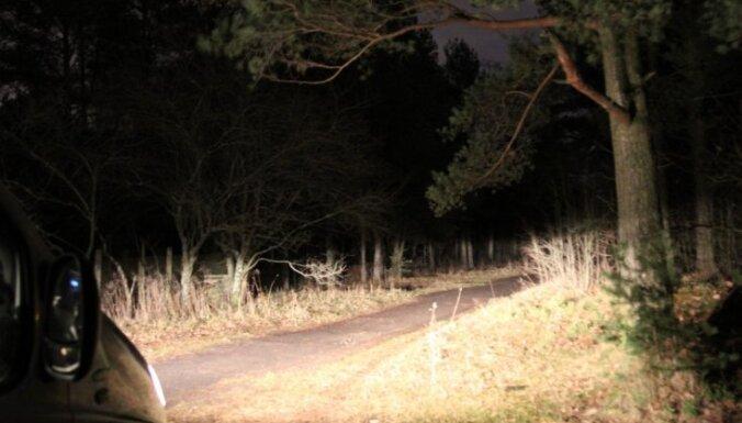 Полиция и земессарги обнаружили в лесных массивах пропавших без вести женщин