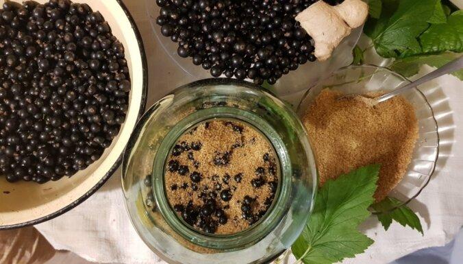 Ванильный ликер из чёрной смородины с имбирём