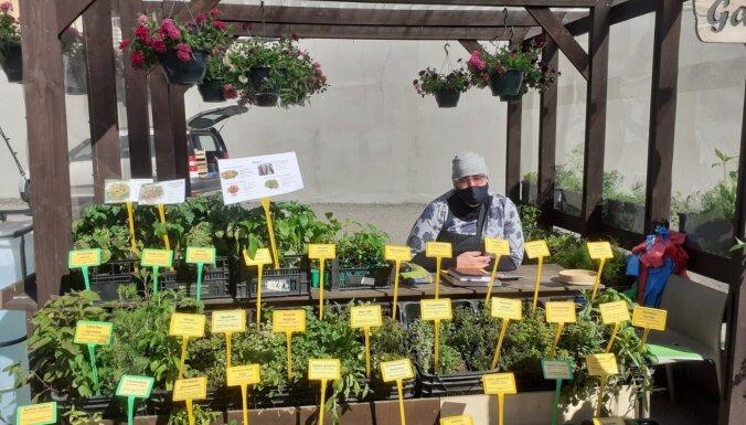 'Ja eju uz tirgu, tad pērku daudz!' Pastaiga ar Lauru Grēviņu pa Āgenskalna tirgu