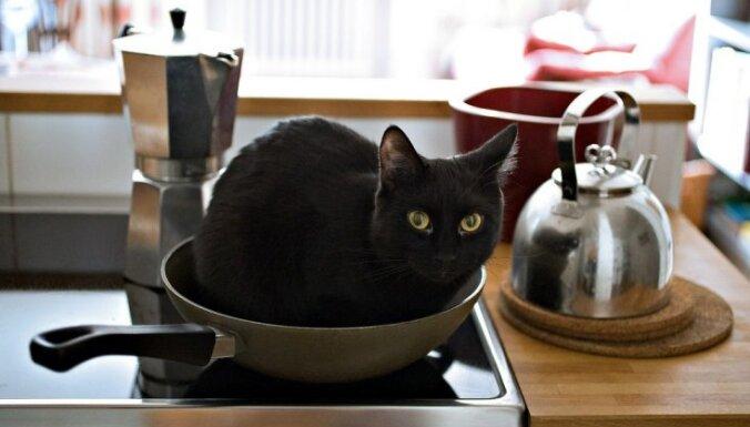 Melnā krāsa virtuvē - kā atrast zelta vidusceļu?