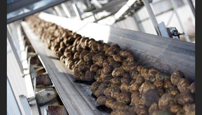 Дума раздаст малоимущим по 10 кг картошки