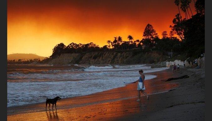 С начала года— уже свыше 700 лесных пожаров