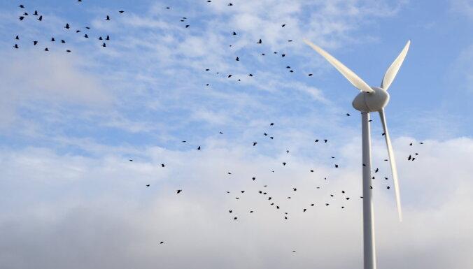 Латвия и Эстония планируют построить совместный парк ветрогенераторов в Рижском заливе