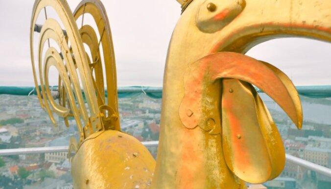 ВИДЕО: Как выглядит Рига глазами главного петушка столицы