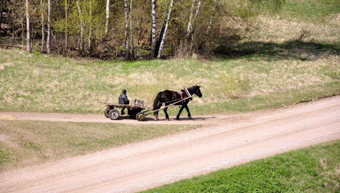 В Лудзенском крае задержан пьяный на телеге с лошадью