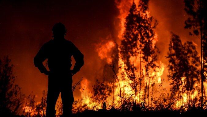 ФОТО: В Португалии бушуют лесные пожары