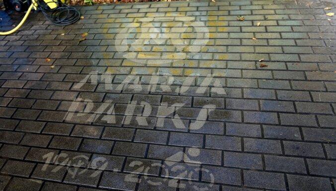 """Последняя акция защитников """"Марса"""": активисты призывают защитить Анниньмуйжский парк"""