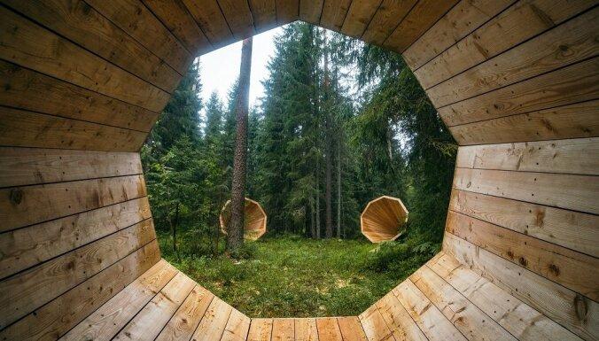 Семейных отдых с малышом на юго-западе Эстонии: как сделать, чтобы все получили удовольствие
