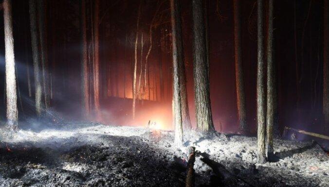 Новый большой лесной пожар: горит лес и болото в Кемерском национальном парке