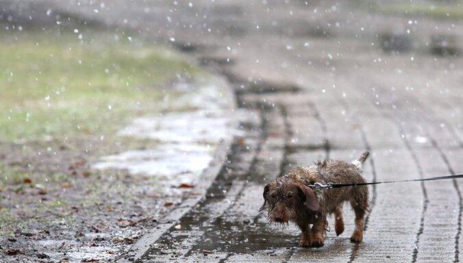 Otrdien gaidāmi īslaicīgi nokrišņi - lietus un slapjš sniegs