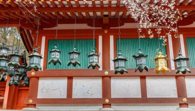 Чисто по-японски: страна, где на улицах нет дворников и урн для мусора