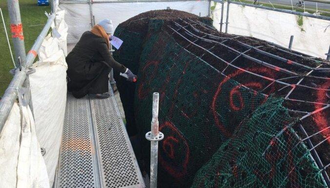 Venstpilī puķu gotiņu apstāda ar 8700 augiem