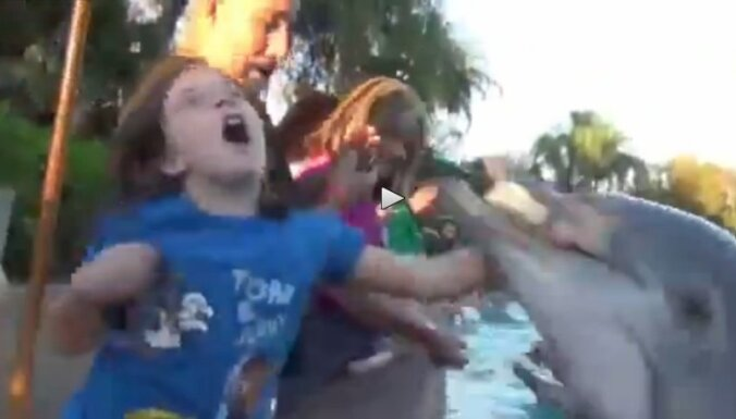 Дельфин напал на ребенка в океанариуме (видео)