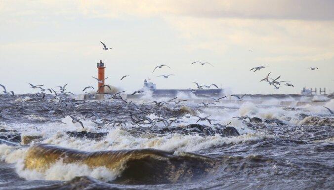 Спасатели предупреждают о штормовом ветре