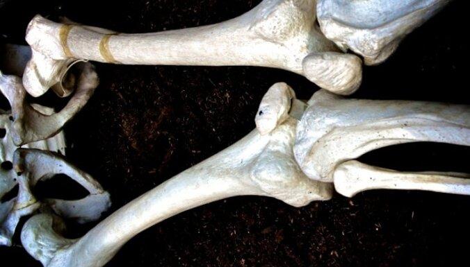 В румынской школе изучают анатомию по скелету умершего директора