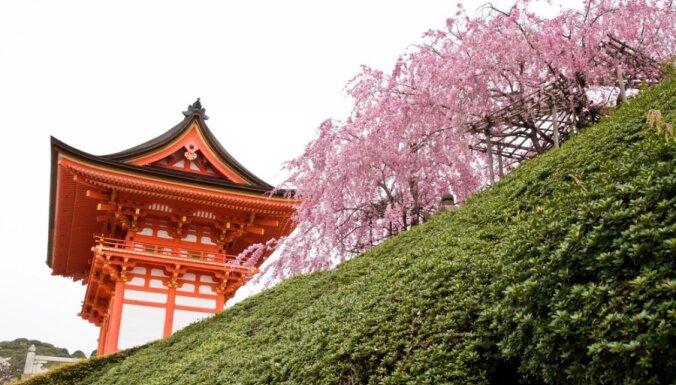 В Риге пройдет аукцион в поддержку Японии
