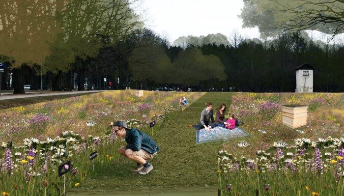 Valmierā top vides mākslas darbs 'Maģistrāle Pļava'