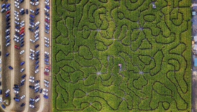 Apmaldīties starp dzīvžogiem: pieci iespaidīgi labirinti pasaulē