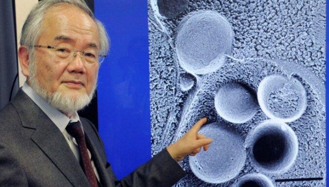 Nobela prēmija medicīnā piešķirta par autofāgijas mehānisma atklājumiem