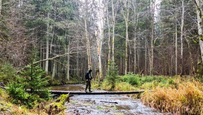 ФОТО. Природная тропа Цецилю, где когда-то жил черт с двумя ведьмами