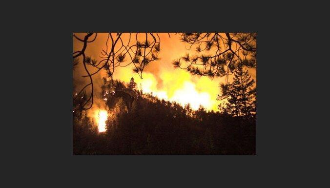 В Саулкрасты горят 20 гектаров леса