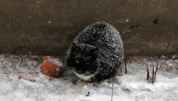Ziemassvētku naktī valsts austrumos gaisa temperatūra var noslīdēt zem -10 grādiem
