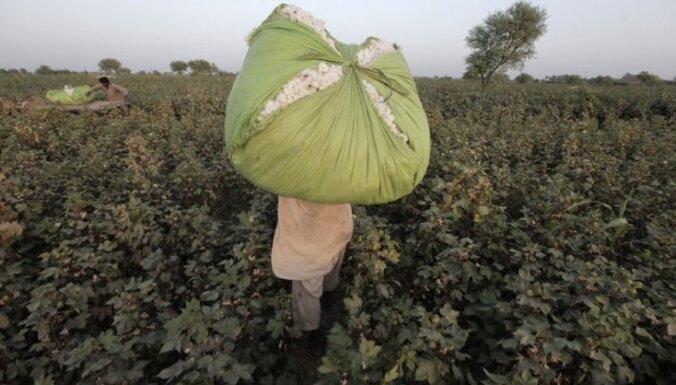 Uzbeki pirms premjera vizītes līmē atpakaļ jau novāktu kokvilnu