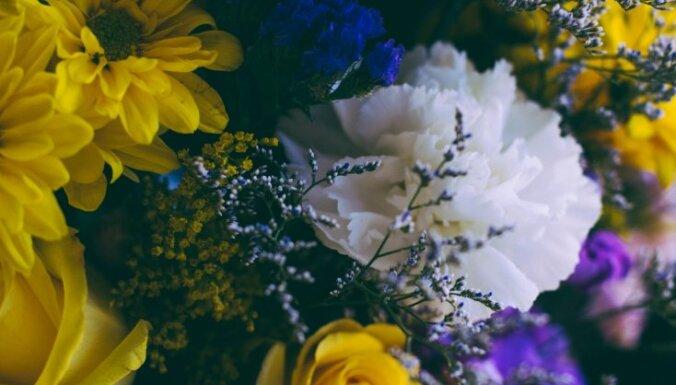 Kā vārds ietekmē tavu dzīvi: Kora, Kintija